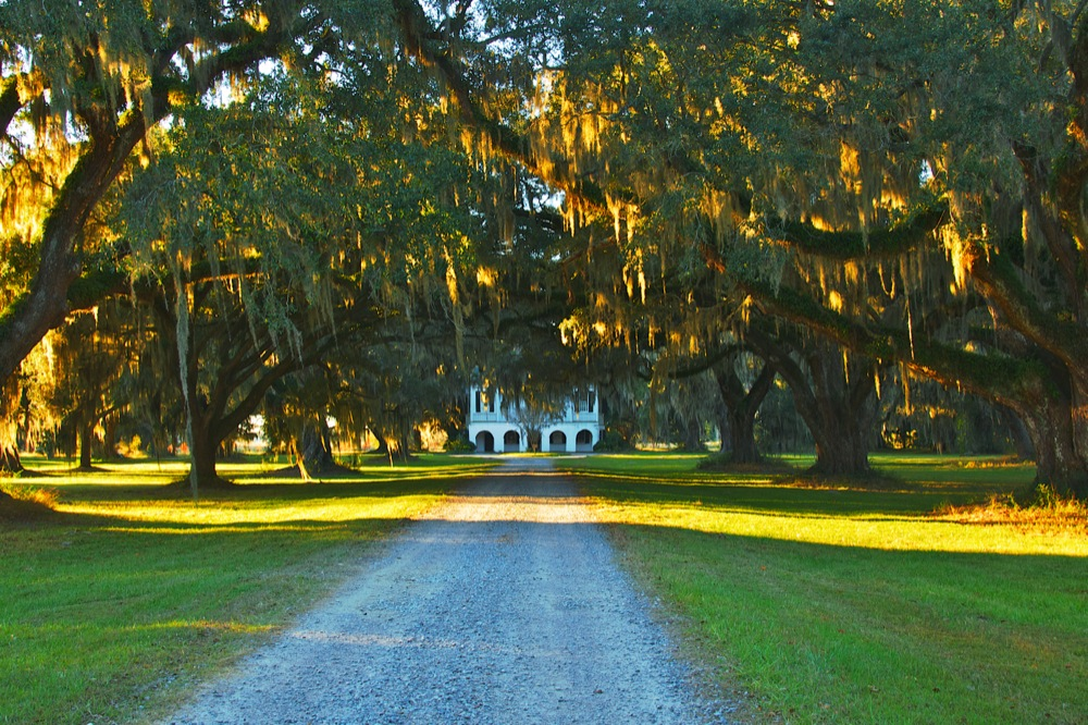 Antebellum Mansion and Live Oaks, Ace Basin, Edisto, SC