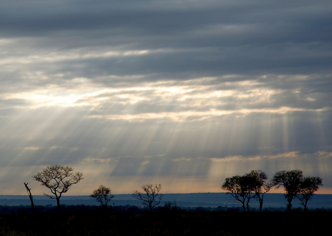 Morning Sun and Cloud Break, South Africa