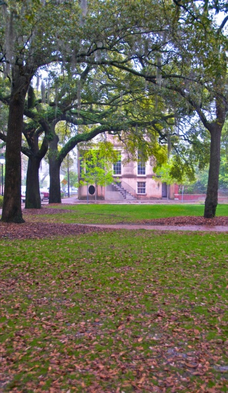 Morning, in a square in Savannah.