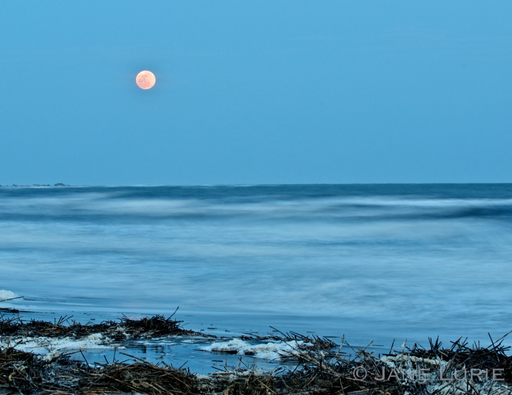Full Moon, Kiawah Island