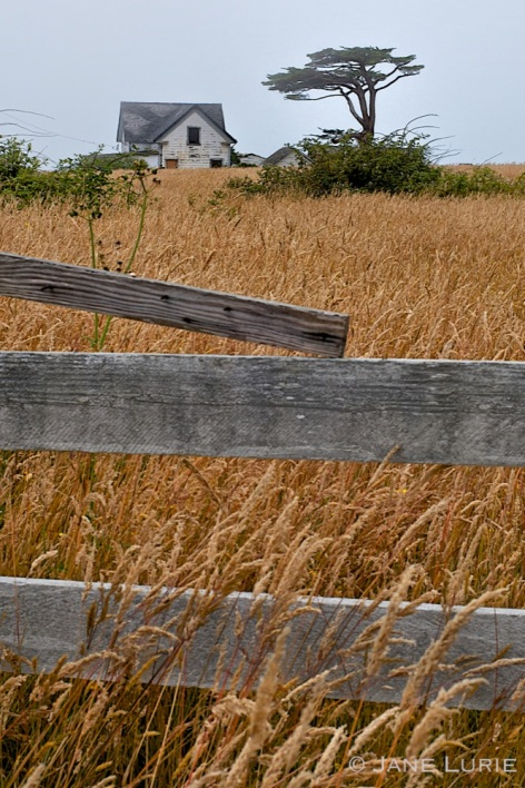 Fence and Farm House, Sea Ranch, CA