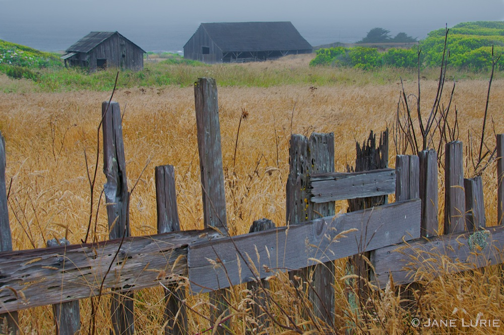 Fence and Barns, Sea Ranch, CA