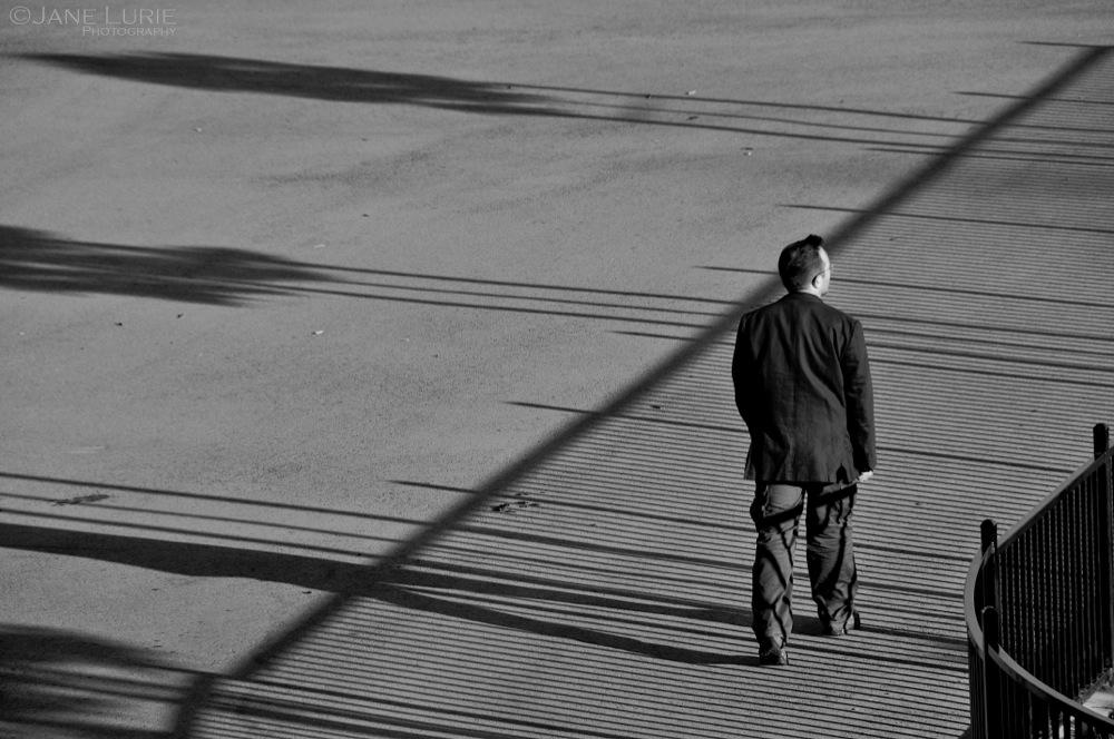 Park Shadows, San Francisco