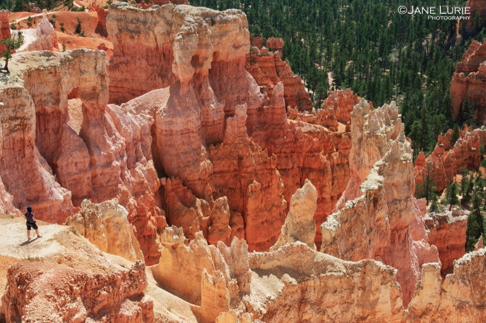 Moment of Inspiration, Bryce Canyon