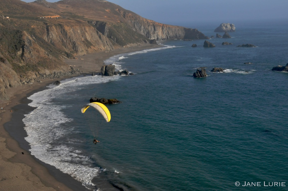 Floating Freely, Sonoma Coast