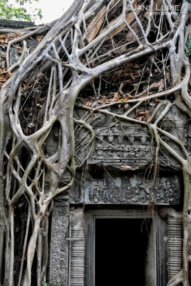 Banyan and Lost Door, Siem Reap, Cambodia