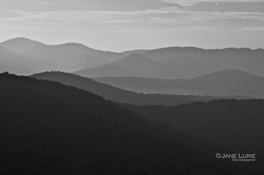 Misty Morning, Asheville, NC