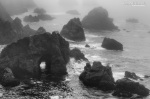 Rocks and Fog, Bodega Bay, CA