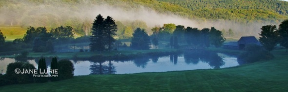 Morning at Honey Pond, Vermont