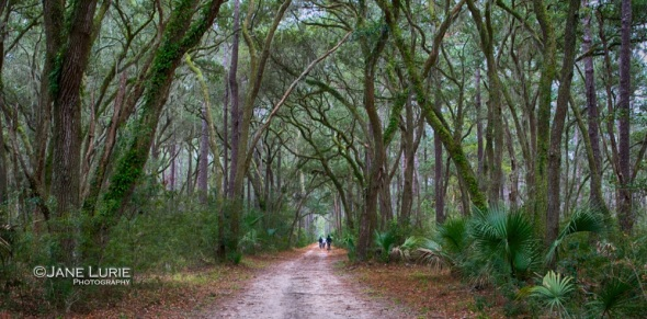 Live Oak Ride, Bluffton, SC