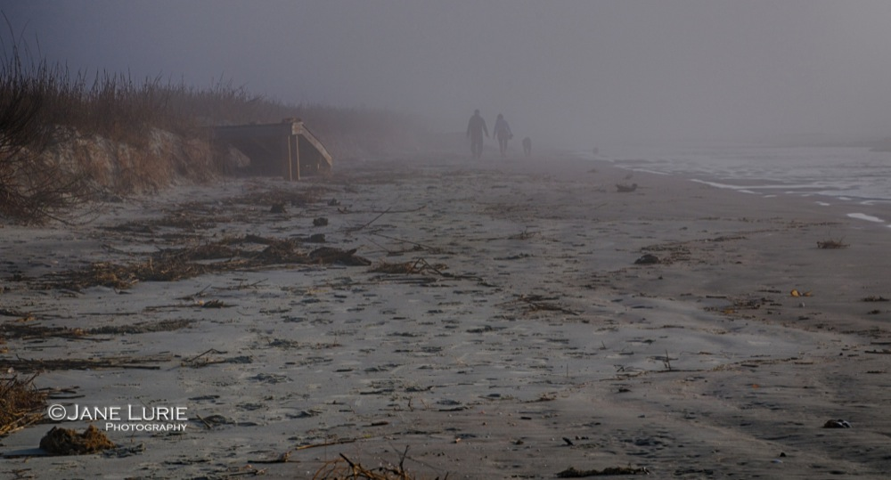 Lost in the Fog, Kiawah Island, SC