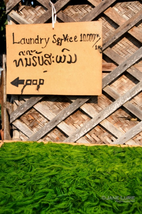 Laundry and Seaweed, Chiang Mai, Thailand