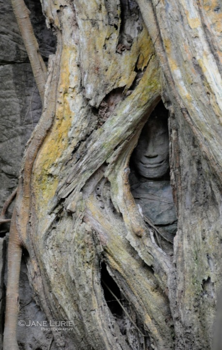 Hidden Smile, Ta Prohm, Cambodia