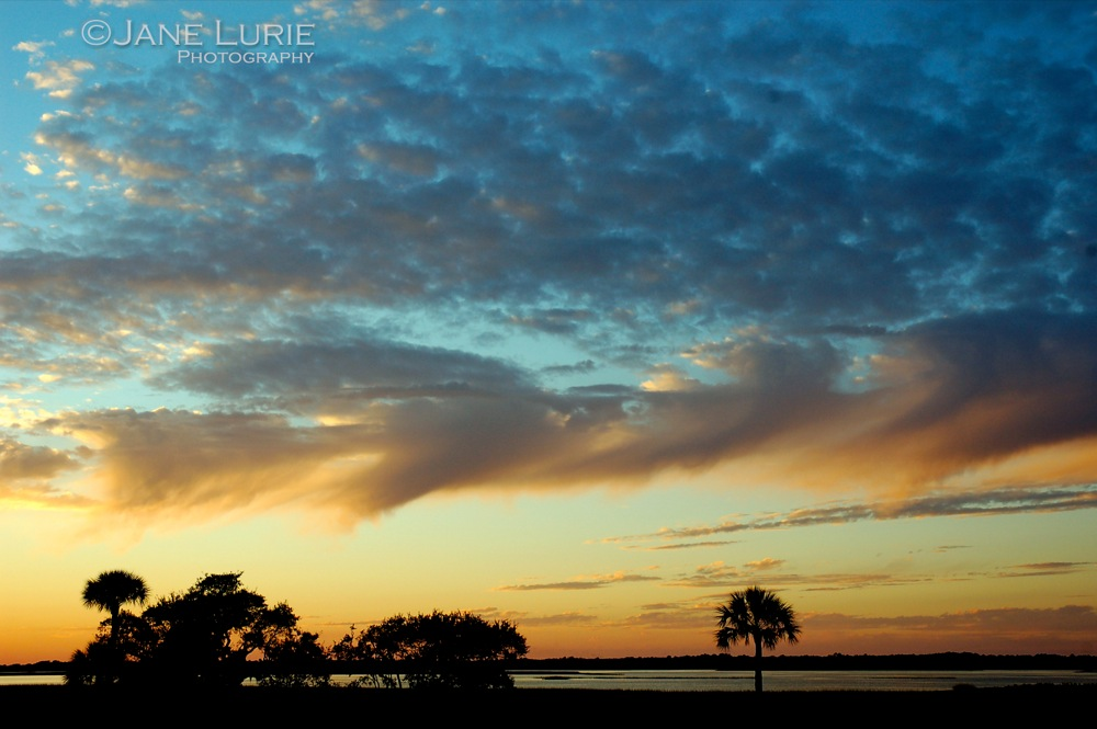 Sunset and Palms, South Carolina
