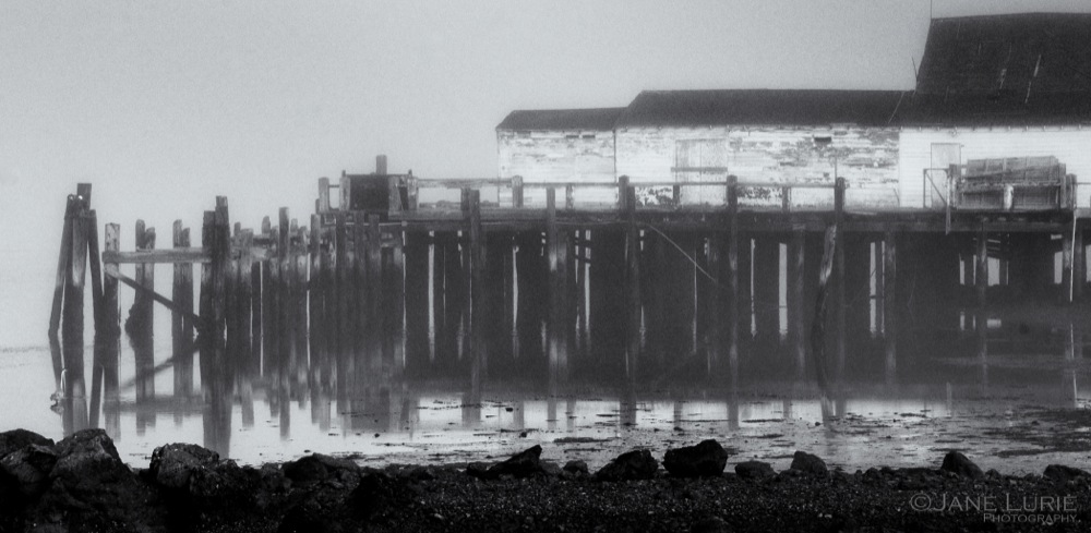 Pier and Reflection, Bodega Bay