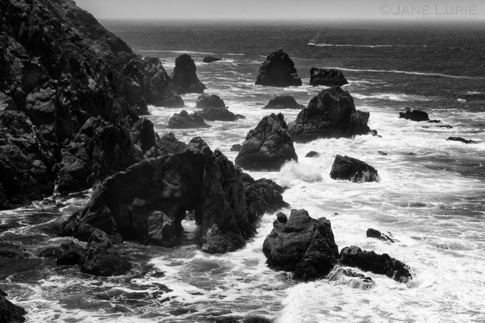 Rocks, Bodega Headlands