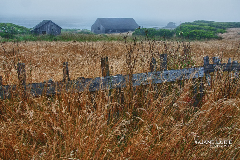 Barns, Sea Ranch, CA