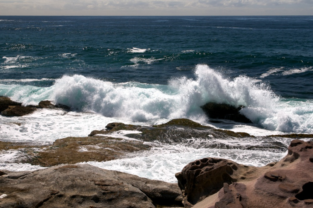 Rocks and Surf, Bronte