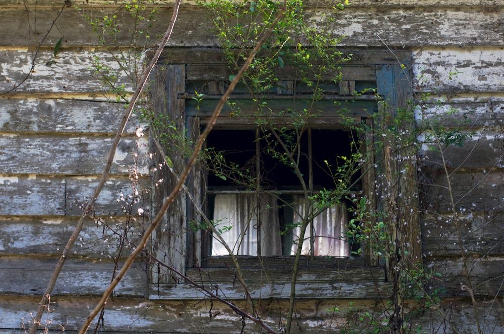 Curtains, Johns Island, SC