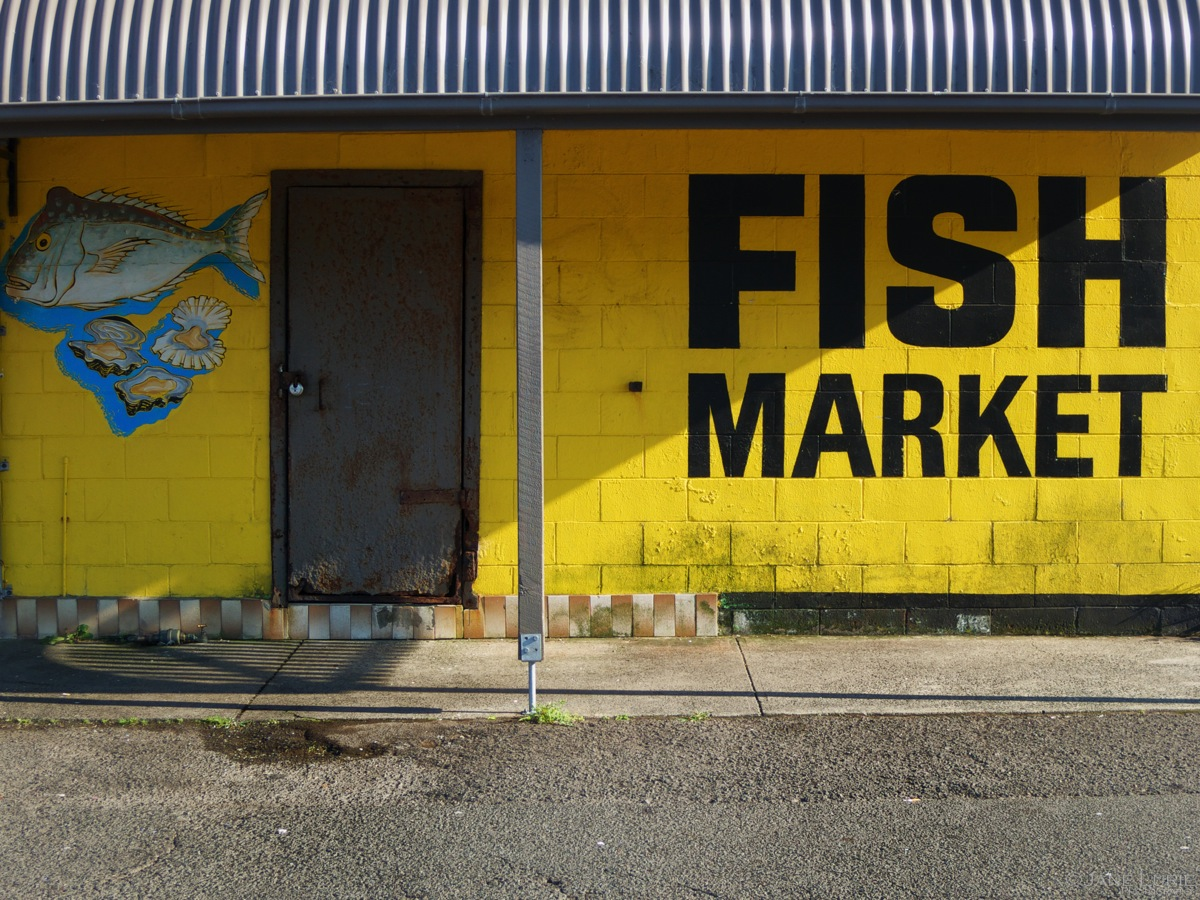 Morning, Fish Market, Kiama