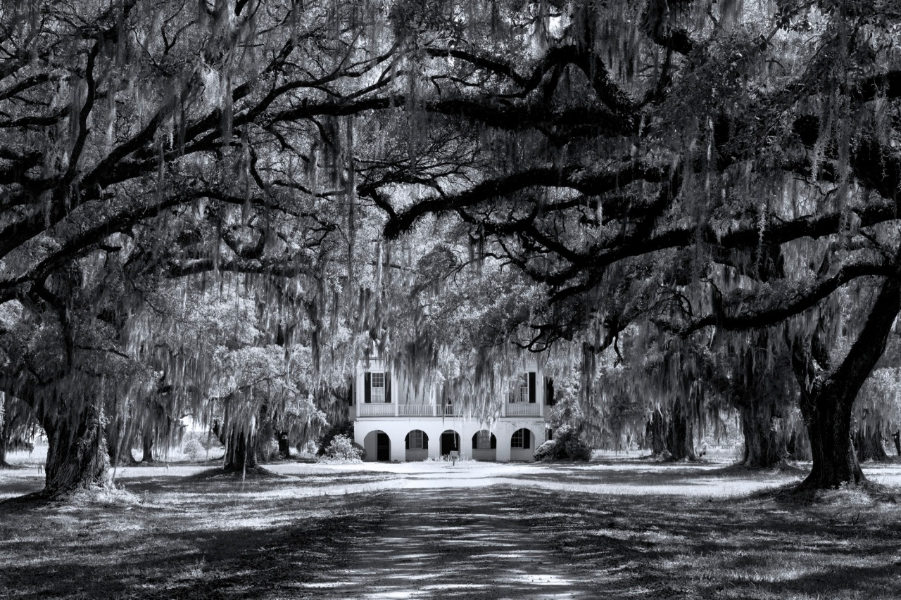 South, Antebellum, Edisto,