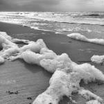 Landscape Photography, Kiawah Island, Nature, Ocean, Beach