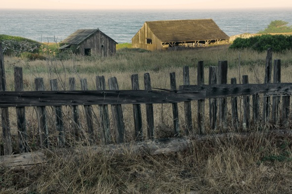 Sea Ranch, Landscape, California, Barns, Fence