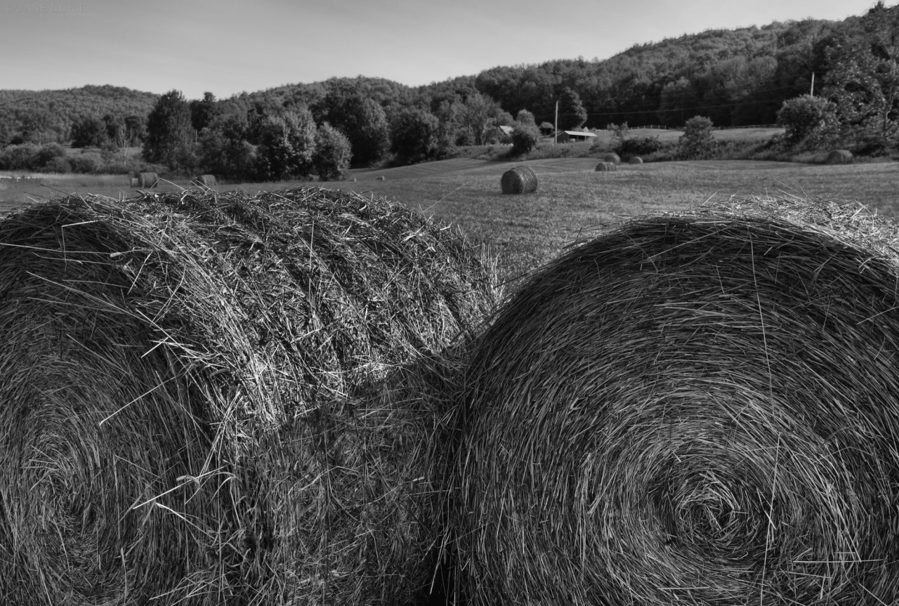 Hay Bales, Farm, Vermont, Landscape, Black and White