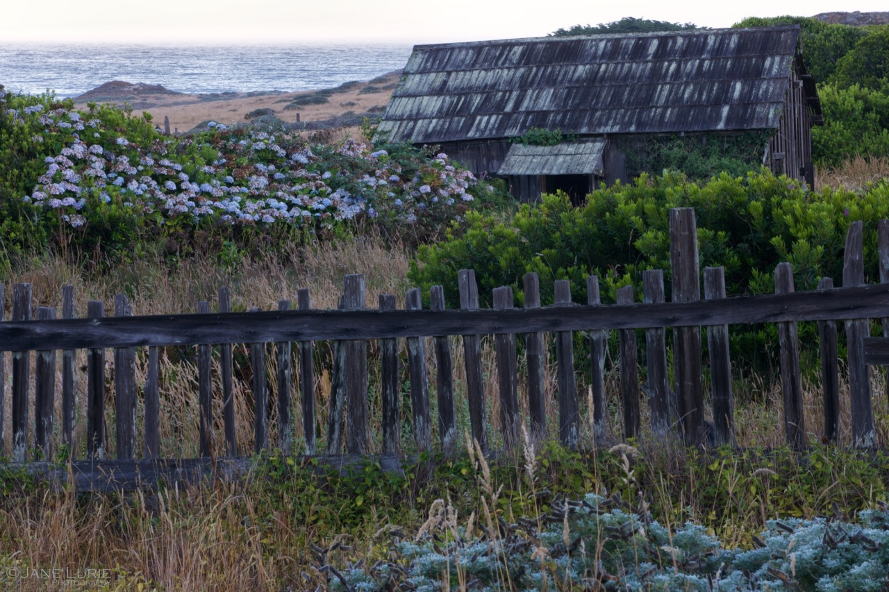 Sea Ranch, Barn, Fence, California