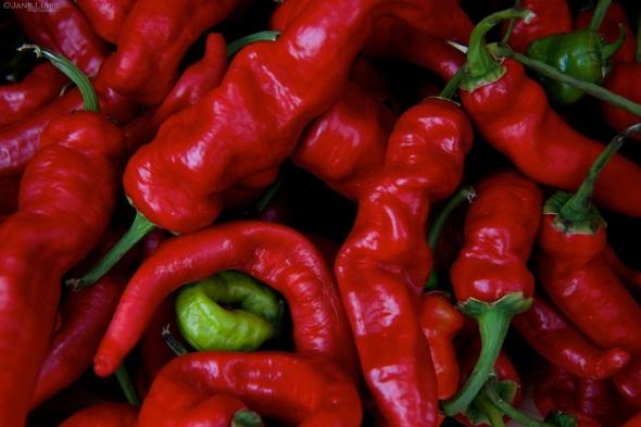 Produce, Macro, Organic, Nature, Farming