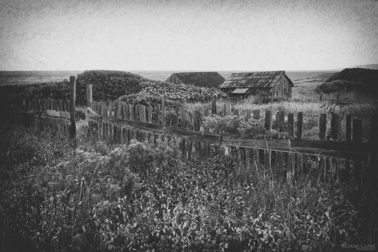 Cailfornia, Black and White, Barn, Landscape