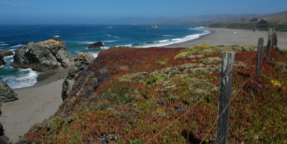 Sonoma Coast, Landscape, California, Fence,