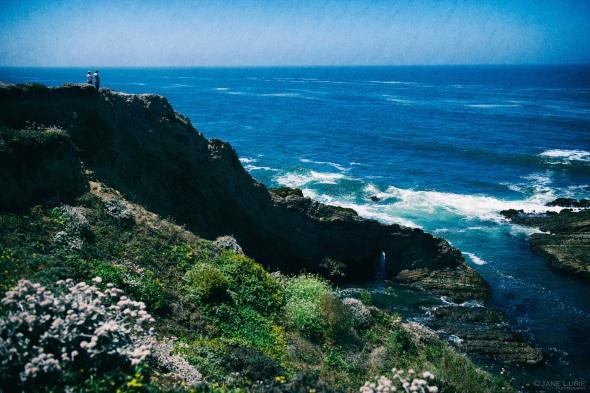 Landscape, Sonoma, Ocean, Nature, Nikon