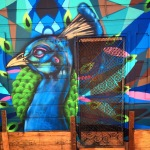 Peacock Door. The Mission