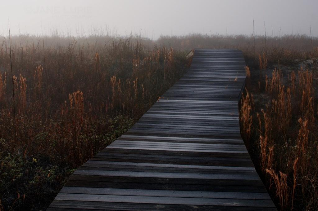 Landscape, Beach, Nature, Nikon,