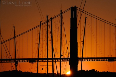 San Francisco, Sunset, Silhouette, Nikon