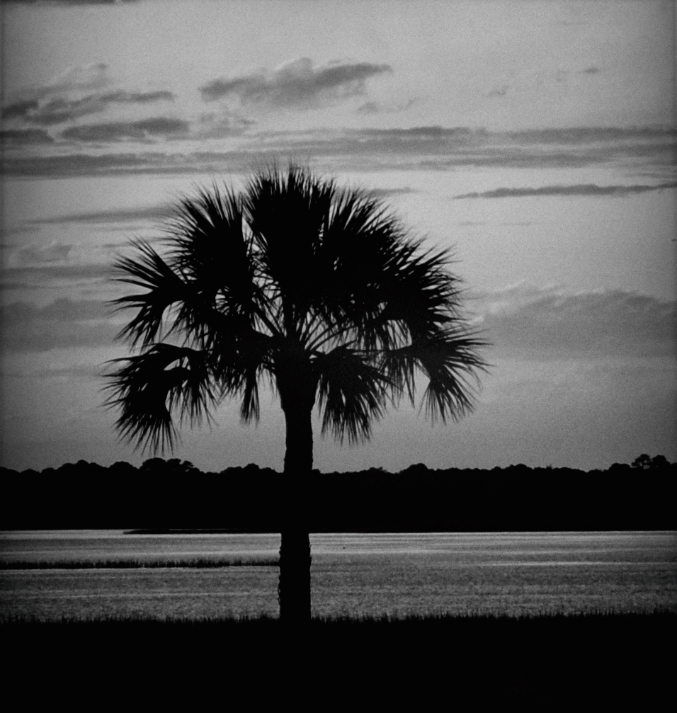 Monochrome, Palmetto, South Carolina