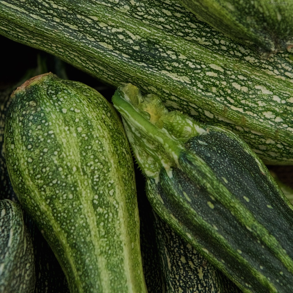 Produce, Agriculture, Organic, California, Close-Up, Vegetables, Fruit