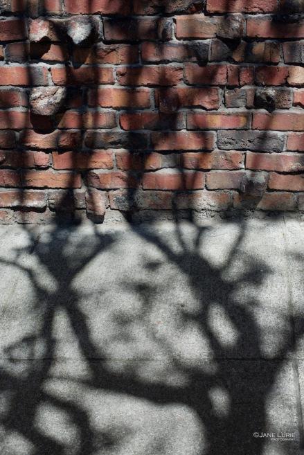 Shadow, City, San Francisco, City, Abstract