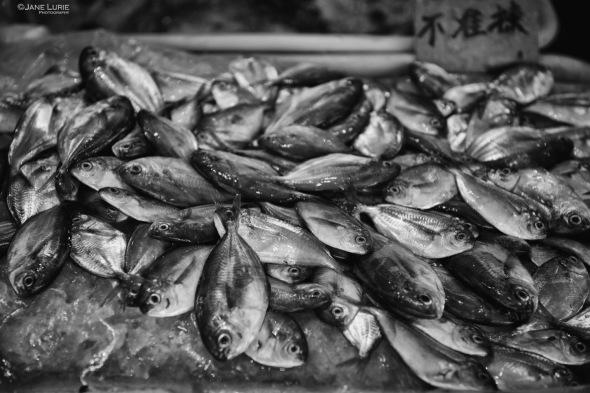 City, Seafood, Black and White, Monochrome, Food
