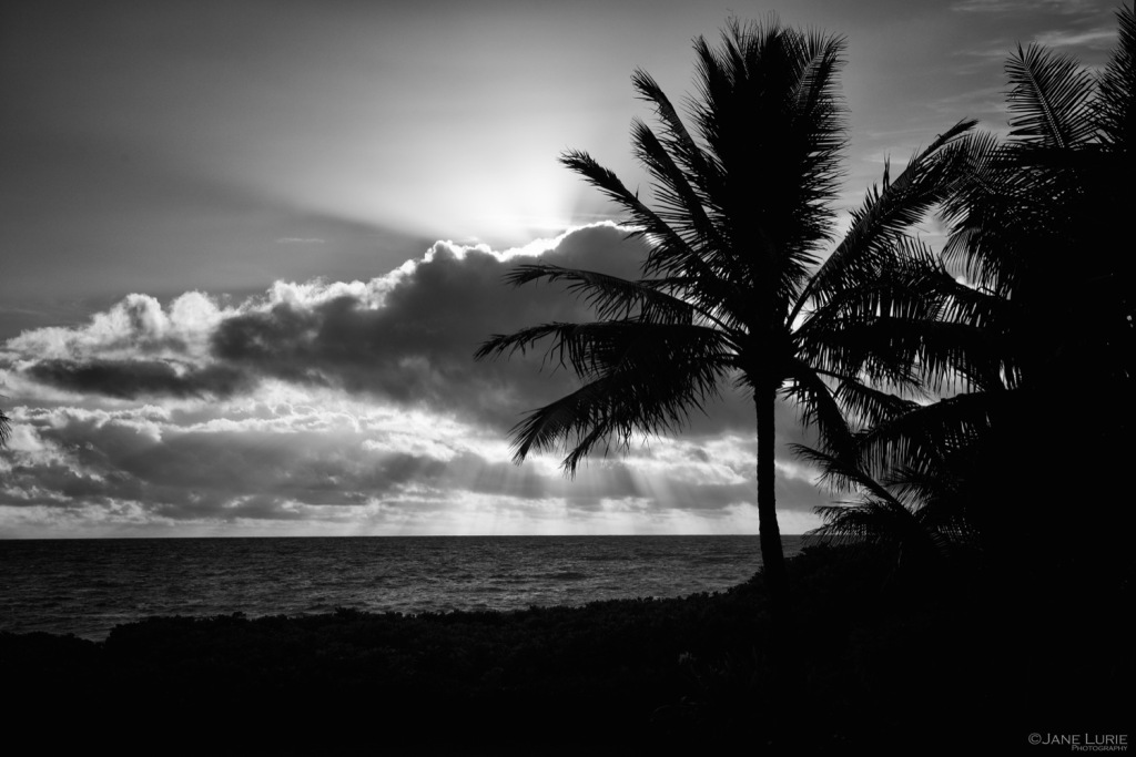Landscape, Hawaii, Monochrome, Black and White, Nikon