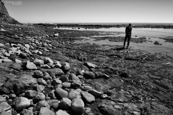 Ocean, Marine, California, Fitzgerald Marine, Science, Landscape, Nature, Monochrome, Black and White