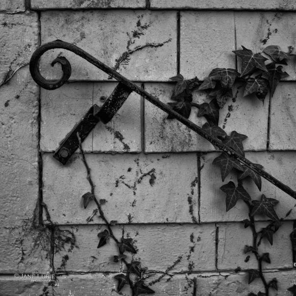 Monochrome, Black and White, Organic, Architecture,