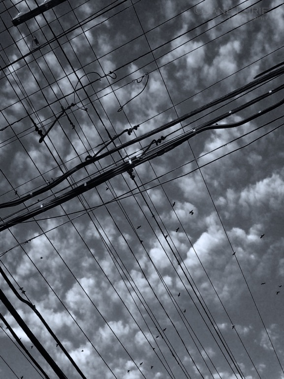 Monochrome, Black and White, Urbn, Clouds, San Francisco, City, Graphic, Nature,