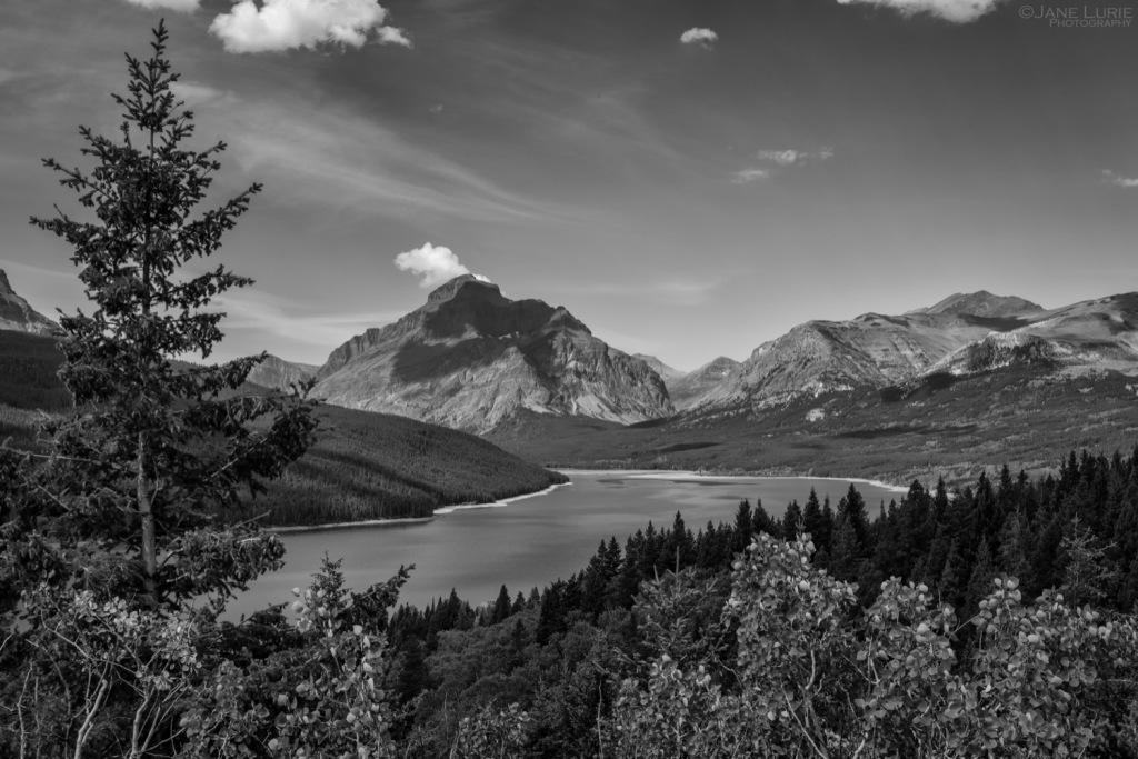 National Park, Nature, Nikon, Photography, Landscapes, Wilderness