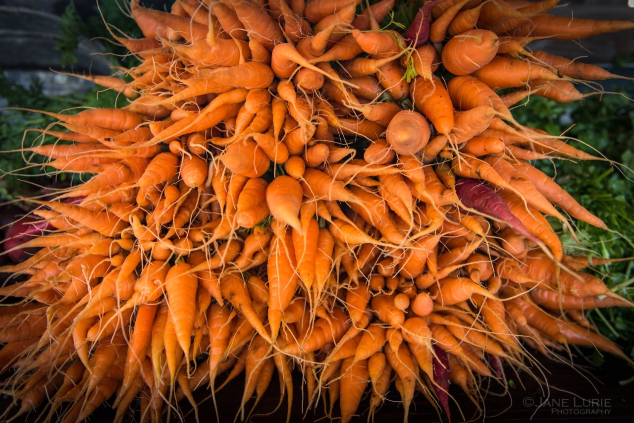 Farm, Produce, Organic, California, Close-up, Photography