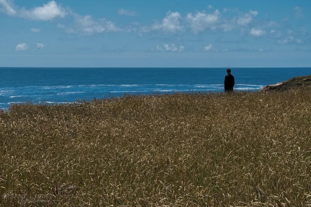 Landscape, Photography, California, Nature, Coastal Photography