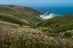 Landscape, Nature, Fujifilm X-T2, California, Coast, Environment, Wildflowers