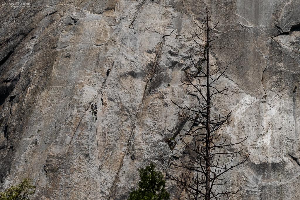 Landscape, Photography, Fujifilm X-T2, National Park, Nature, Environment, John Muir, Yosemite, California, Preservation,