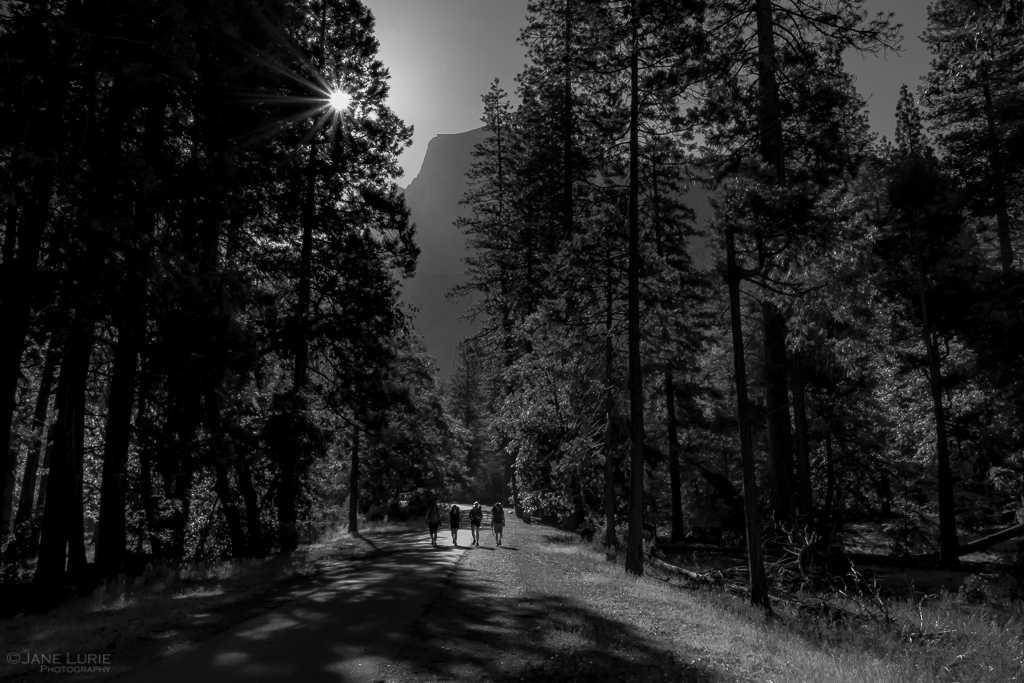 Yosemite Quiet